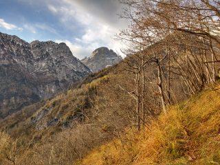 Il Pizzocco dalla Val del Burt